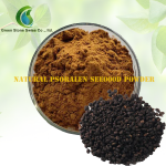 Psoralea Seeds Powder