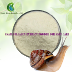 Snail Collagen Extract Powder