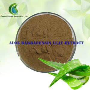 Aloe Barbadensis Leaf Extract