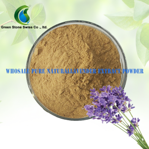 Lavender Flower Extract Powder