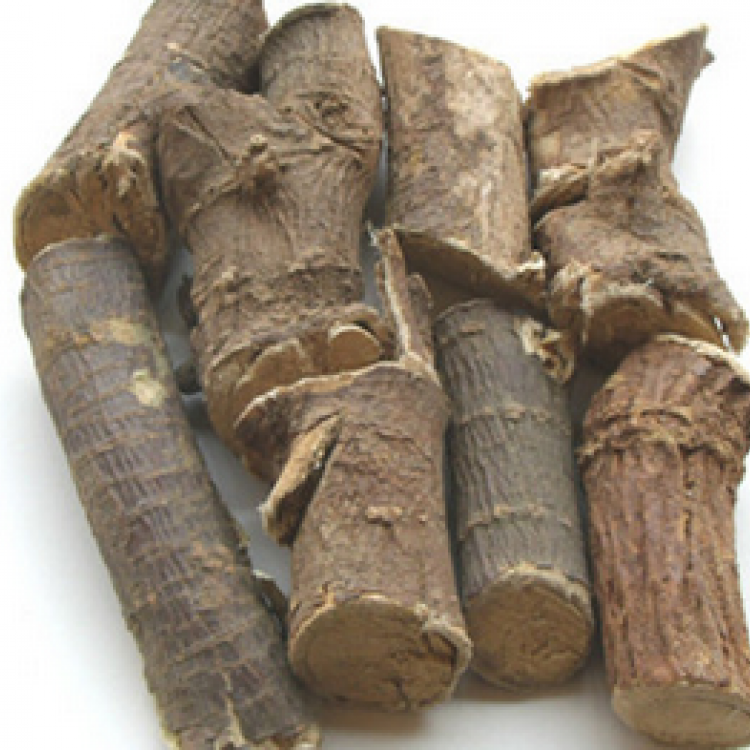 Indian Stringbush Root Extract